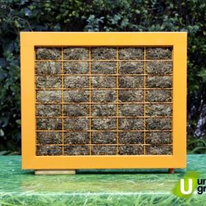 Cuadro Vegeta LeafBox 60x50_02