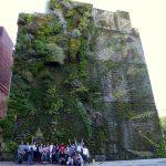 Curso de Jardines Verticales en Madrid - Visita Caixa Forum