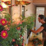 Cursos de jardines verticales Argentina, Uruguay y Chile
