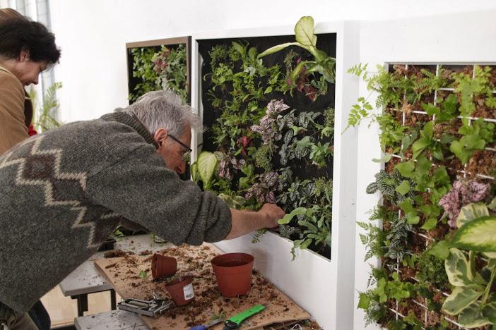 curso de jardines verticales de barcelona