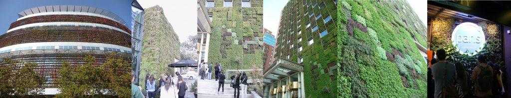 Curso de jardines verticales en Chile - Visita1