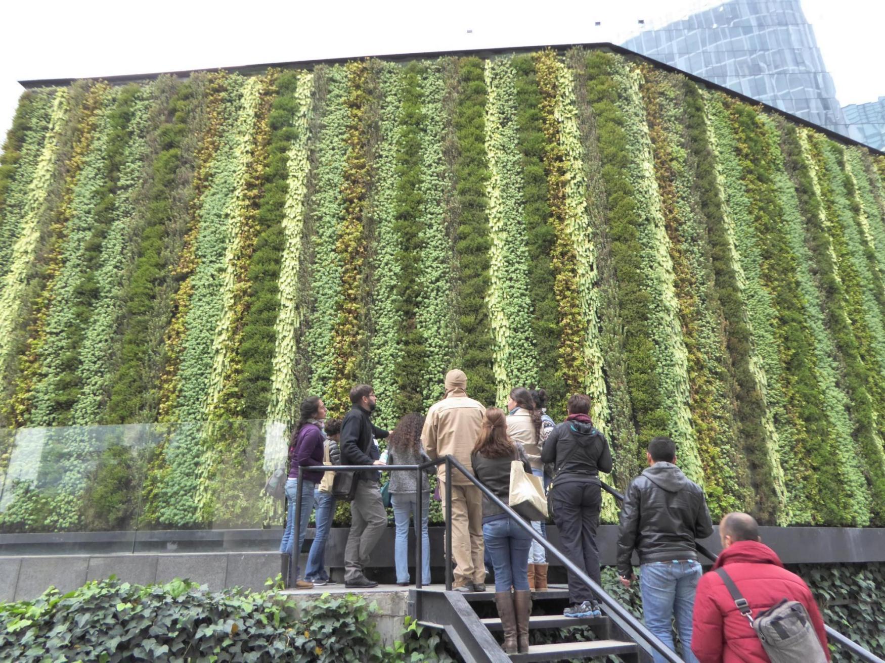Curso de muros verdes en m xico conclusiones for Tela para muro verde