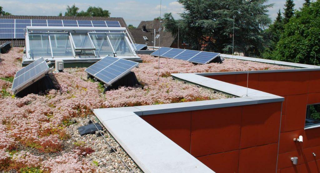 Solar-Greenroof