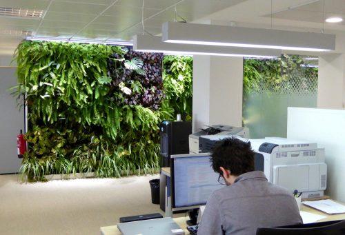 Jardines verticales en Madrid