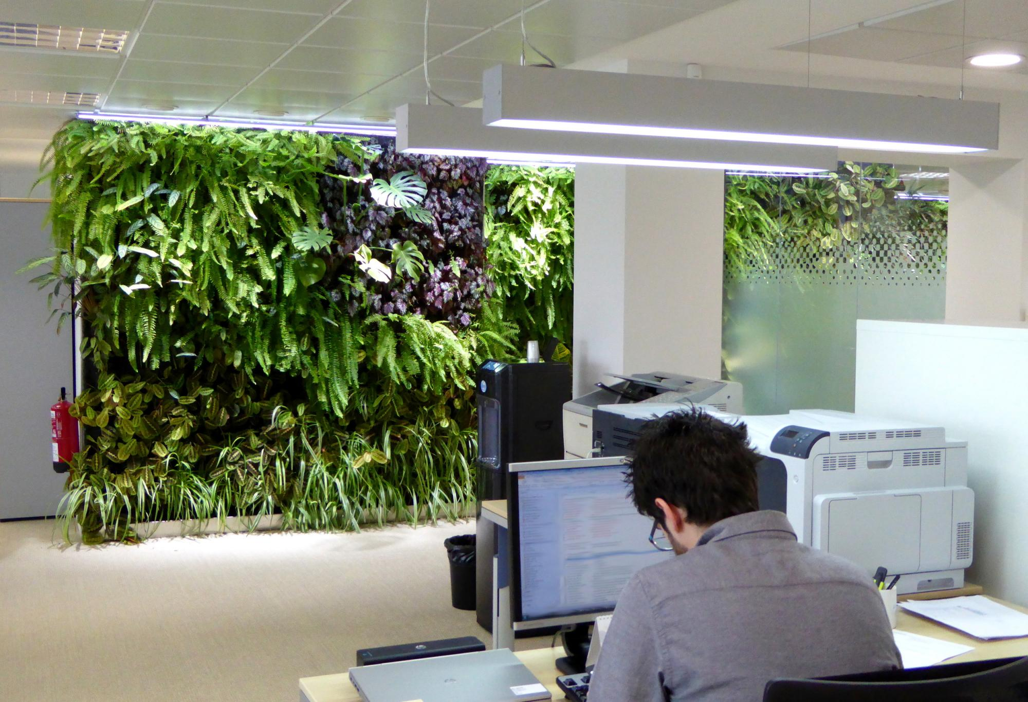 Jardines verticales en madrid 1 a o despu s singulargreen for Jardines exteriores para oficinas