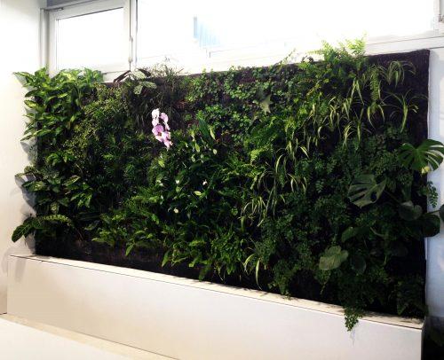 Jardines verticales de interior