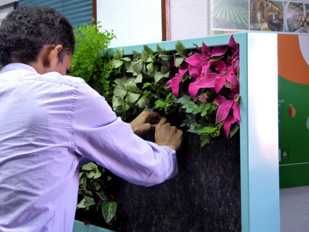 Curso de jardiner a vertical en madrid singulargreen for Jardines verticales pdf