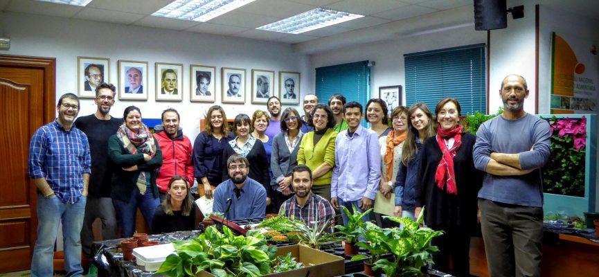 Curso de jardiner a vertical en madrid singulargreen for Escuelas de jardineria en barcelona