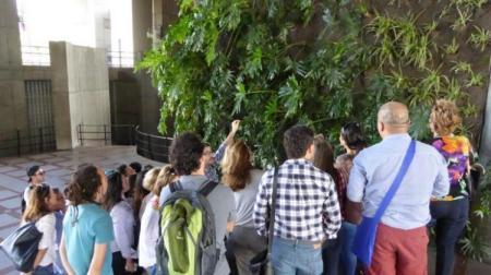 Visitas jardines verticales