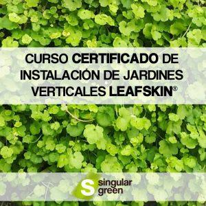 Curso certificado de instalaci n del sistema leafskin for Jardines verticales introduccion