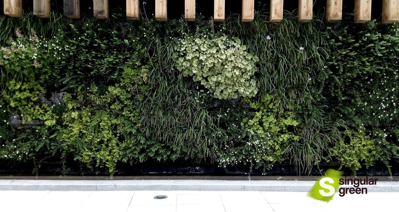 Jard n vertical en bilbao singulargreen for Calle jardines bilbao