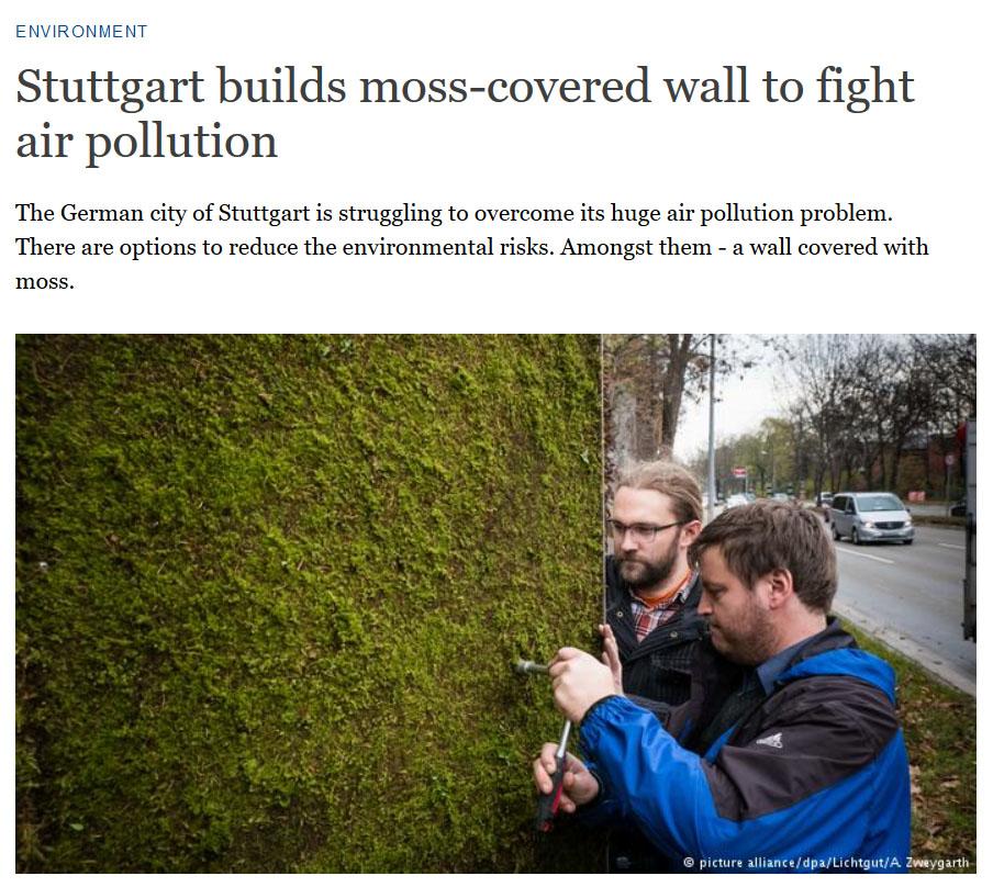Los jardines verticales como filtro de sustancias contaminantes