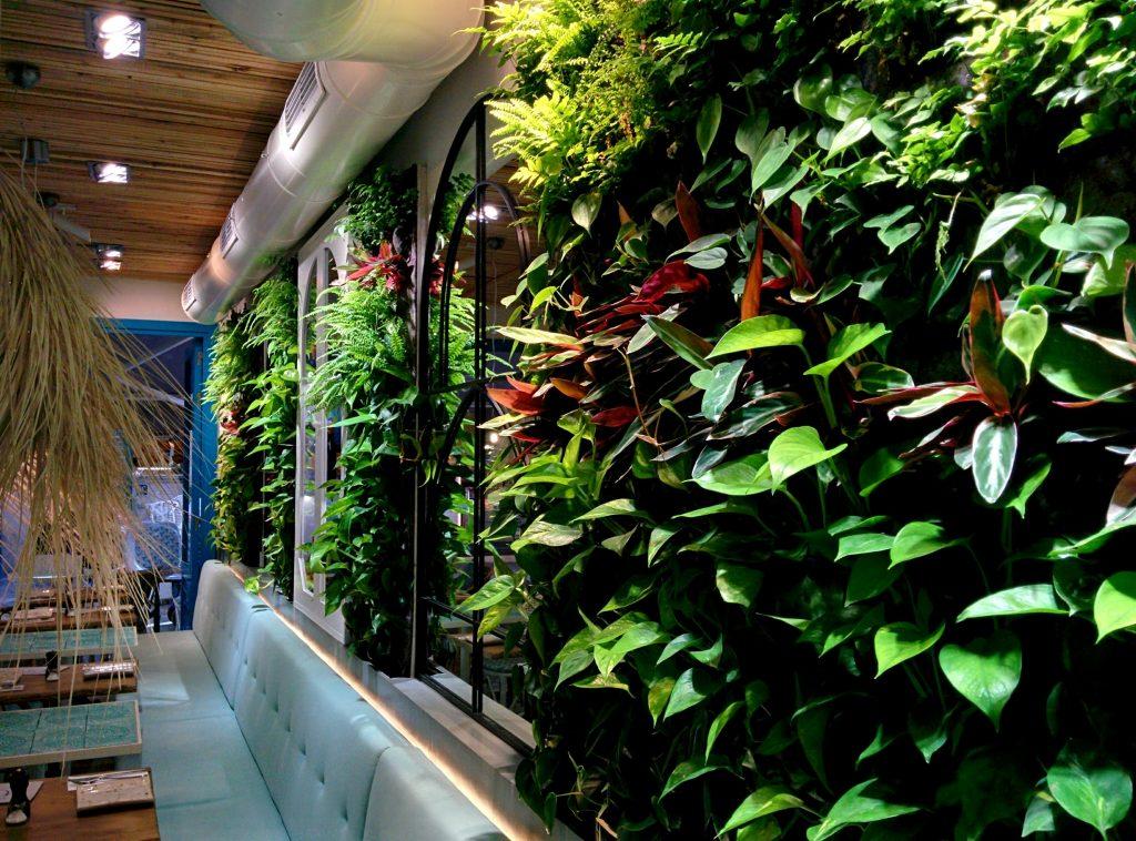 Jardines verticales de interior en mallorca singulargreen - Trabajos verticales en palma ...