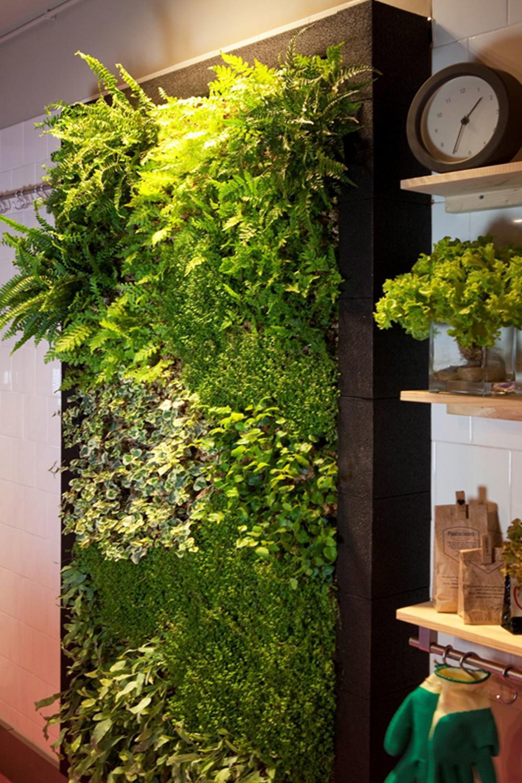 Muros verdes singulargreen for Muros verdes beneficios