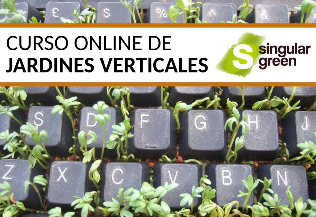 Curso Online De Jardines Verticales Formaci N Continua