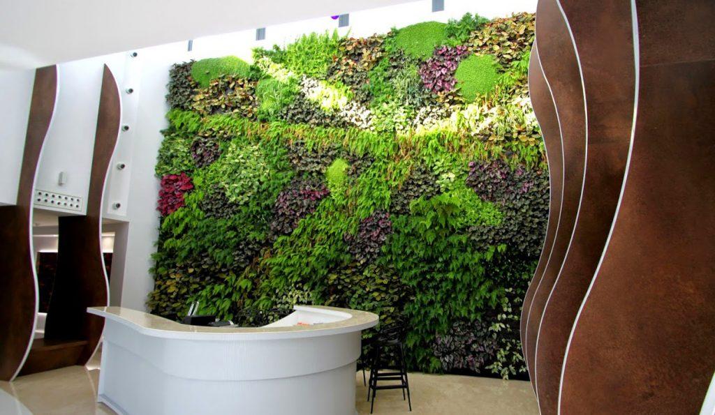 Beneficios de los jardines verticales listado de los m s for Beneficios de los jardines verticales