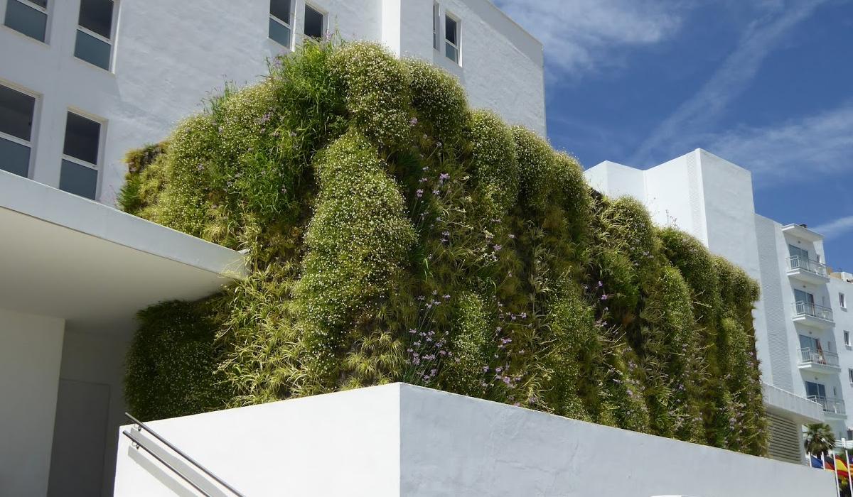 Visita a jardines verticales palma singulargreen - Jardines verticales exterior ...