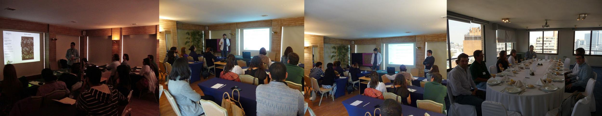 Próximo curso de jardines verticales en Chile, encantados de volver.