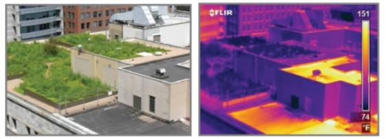 imagen de techos verdes por infrarojos