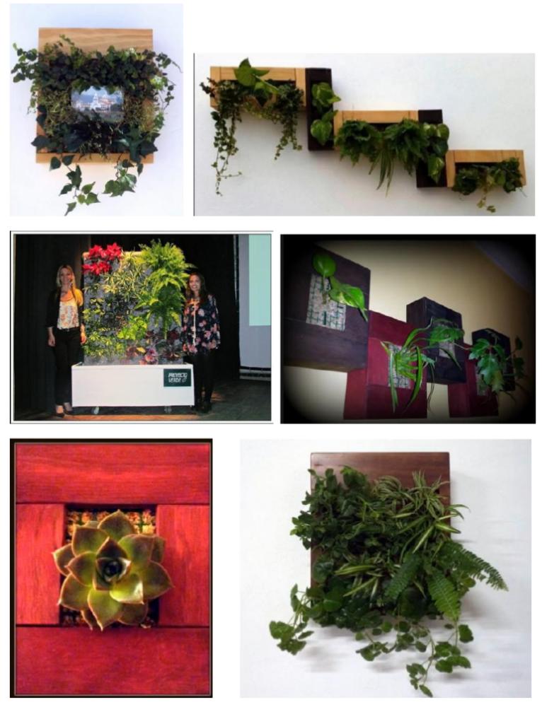 Curso online jardinería vertical - Trabajos de alumnos
