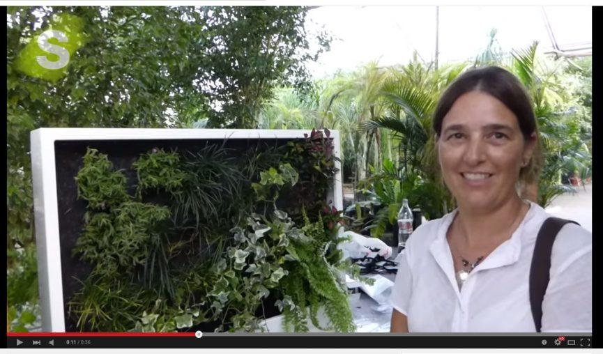 Vídeos Curso Muros Verdes Buenos Aires