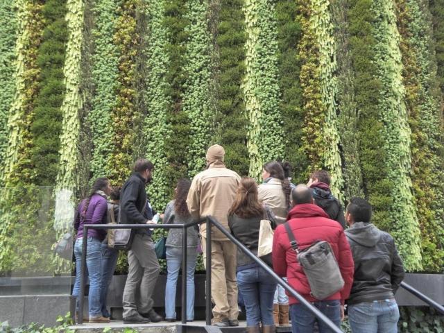 Curso de muros verdes y techos vivos