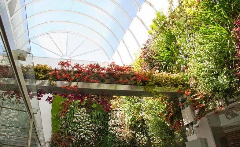 Jardines verticales en argentina los cinco mejores for Beneficios de los jardines verticales