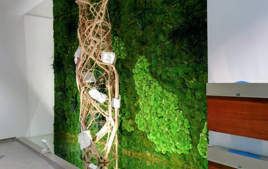 Jardín vertical de planta conservada en Mallorca