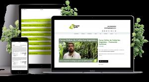 Formación online en cubiertas vegetales