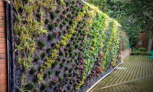 Curso Jardines Verticales Colombia