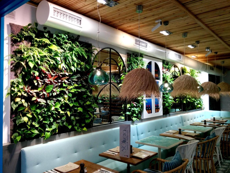 Jardines verticales de interior en mallorca singulargreen for Jardines verticales interior