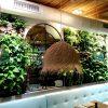 Jardines verticales hidropónicos de interior en Mallorca