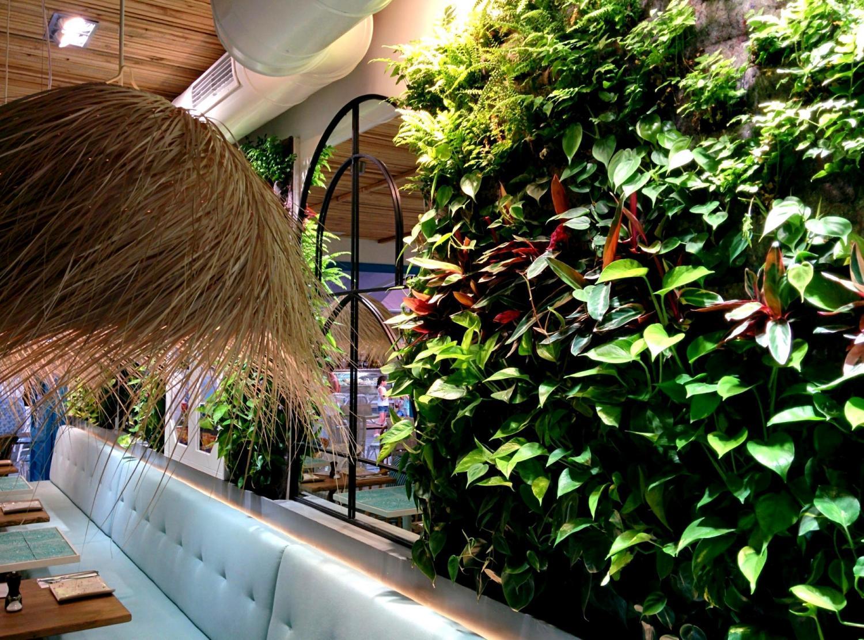 Jardines verticales de interior en mallorca singulargreen for Jardines mallorca