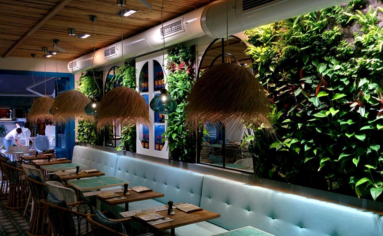 Jardines verticales de interior en mallorca singulargreen - Jardines verticales de interior ...