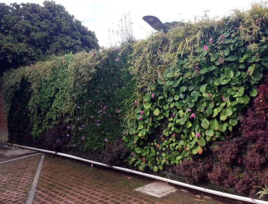 Jardín vertical en Bogotá