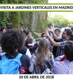 Curso Online de Jardines Verticales Parte práctica Madrid