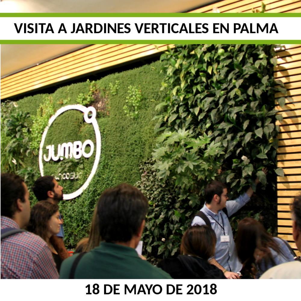 Visita a jardines verticales palma singulargreen - Trabajos verticales en palma ...