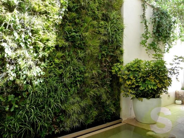 Jardines vetricales en Mallorca