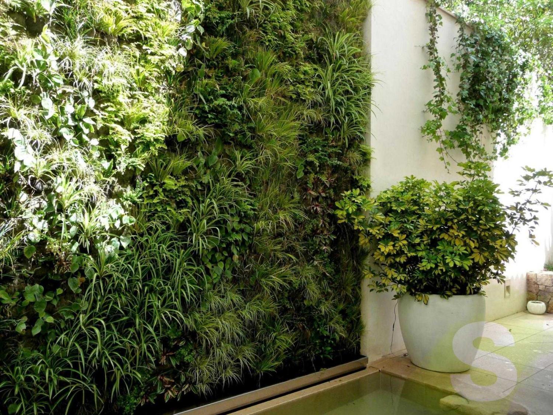 Jard n vertical en mallorca con plantas resistentes a for Jardines mallorca