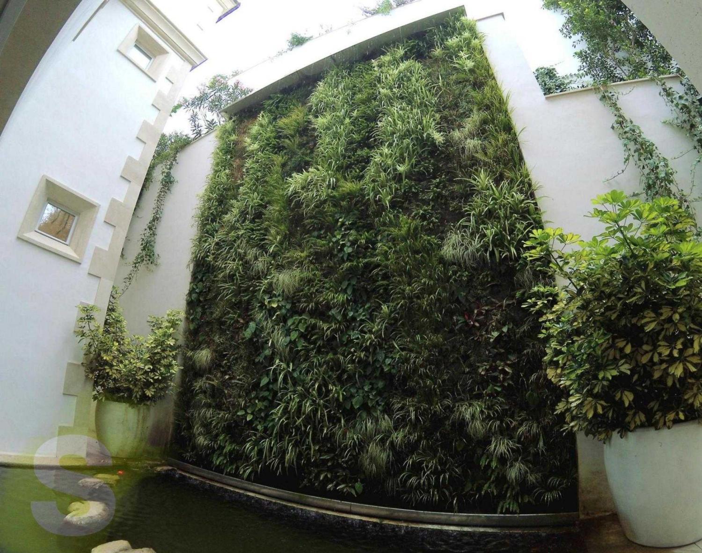 Jardín vertical en Palma, Mallorca