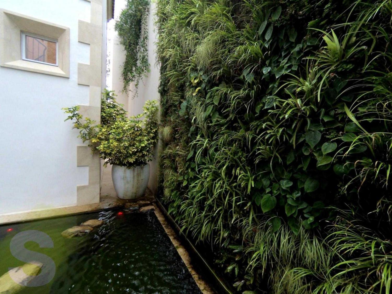 Jardines verticales en Palma de Mallorca