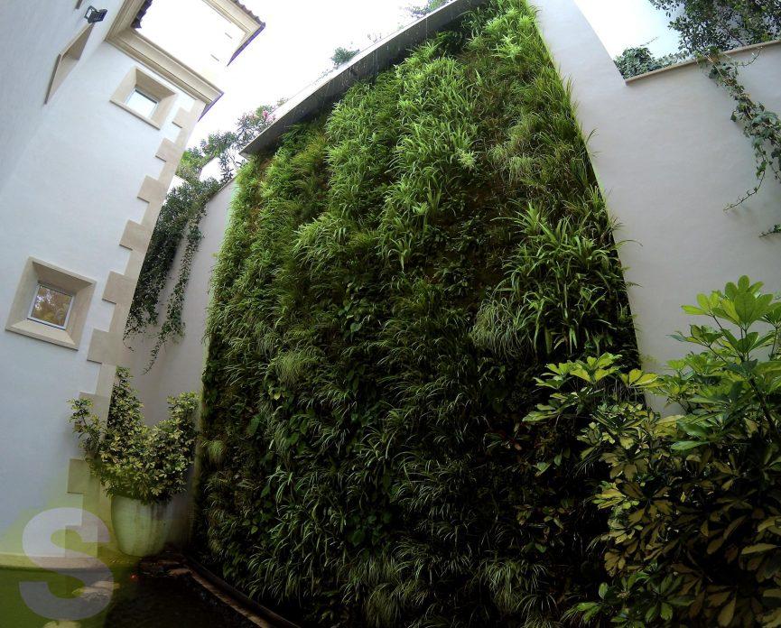 Jardín vertical en Andraxt, Mallorca