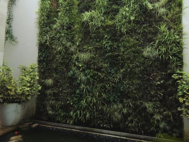 Greenwalls in Majorca