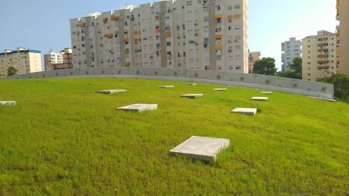 Cubierta vegetal cubiertas vegetales green roof Gandia Valencia