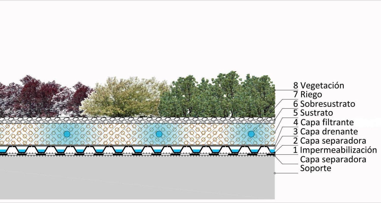 Detalle constructivo de cubierta vegetal