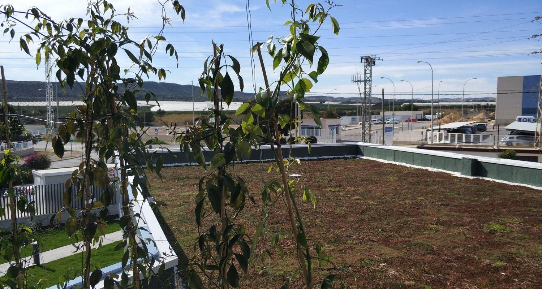 Techo verde en cubierta no transitable en Alicante