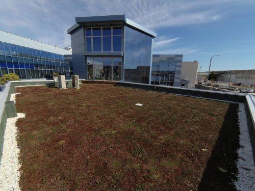 cubierta vegetal cubiertas vegetales greenroof techo vivo