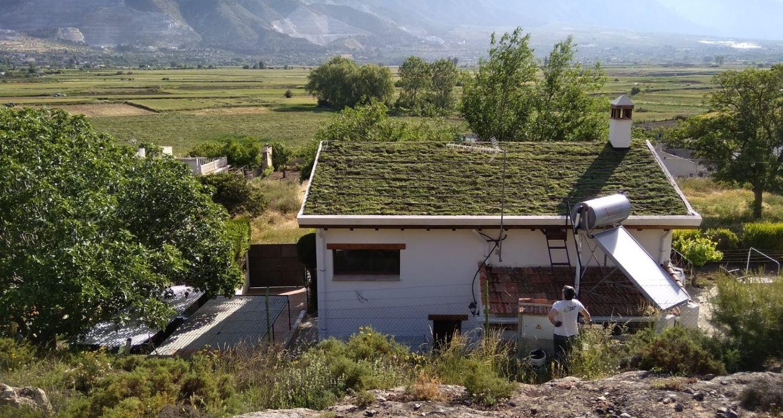 Cubierta vegetal en Granada