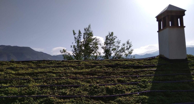 Detalle riego de una cubierta vegetal a dos aguas