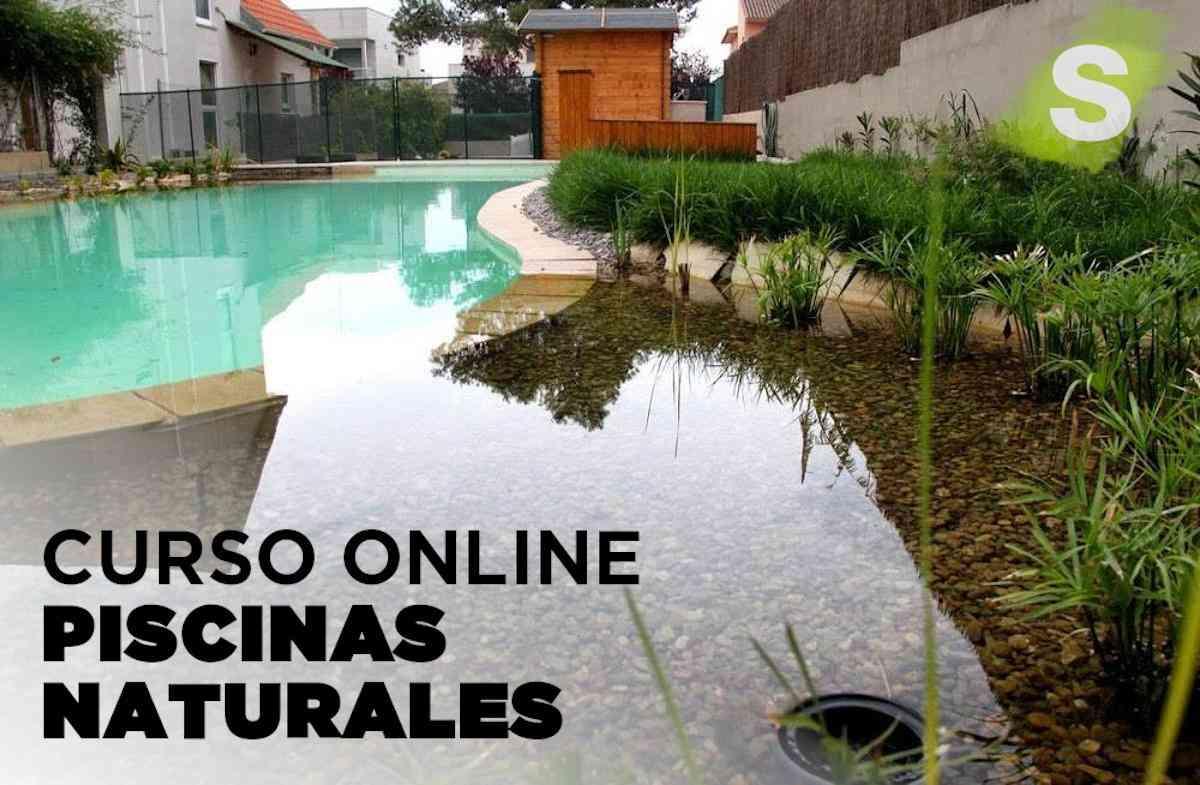 Curso Online de Piscinas Naturales - Formación Continua